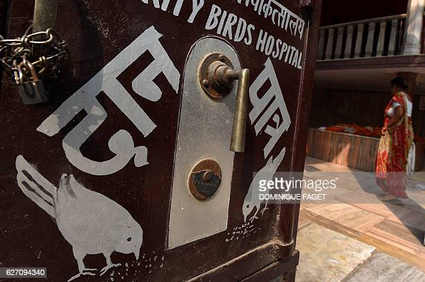 In this photograph taken on November 4 a woman walks past a sign for the Charity Birds Hospital in the old quarters of New Delhi Across from the Red...
