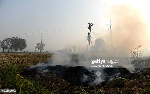In this photograph taken on November 8 smoke drifts from a burning stubble field at Karnal some 140kms north of New Delhi While there are multiple...