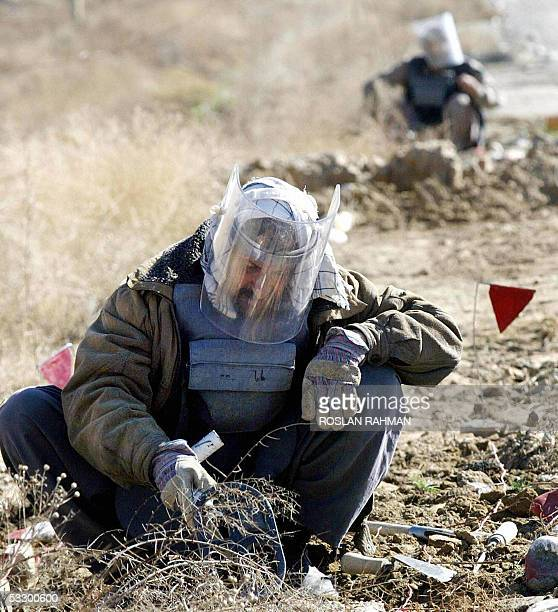 In this picture taken 14 March 2002 Deminers dig through the ground for landmines alongside a road leading to Bagram Air Base Australia announced 29...