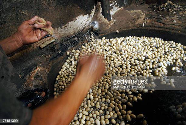In this picture taken 16 September 2007 an Afgan man works on cocoons at a Silk industry factory in Herat west of Kabul In Herat once an important...