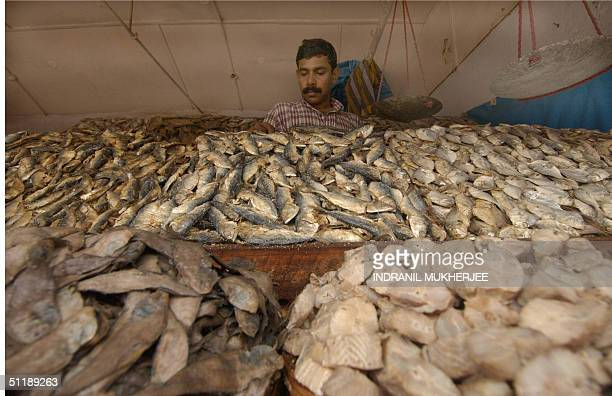 In this picture taken 17 August 2004 Indian fishmonger Sayeed CP arranges Onnaka meendried fish at his roadside stall in Karulai Town of Mallapuram...