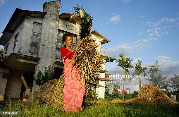 LAND In this picture taken 22 August 2004 Nepalese woman Durga Devi Dhakal works outside her home given to the Dhakal family by Maoist rebels in...