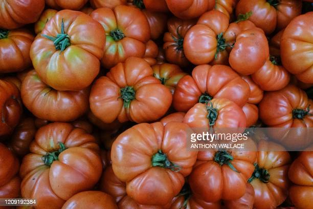 In this picture taken in Hong Kong on March 18 a basket of locally grown tomatoes is seen at Ma Po Po Community Farm. - After the coronavirus...