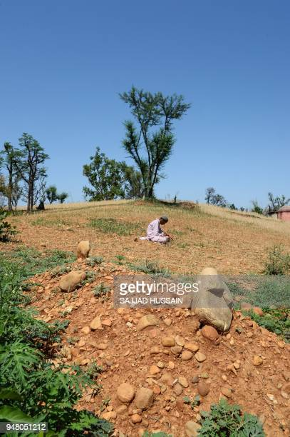 In this picture taken on April 17 an Indian Kashmiri nomad boy sits near the grave of the eightyearold girl who was raped and murdered at Koota...
