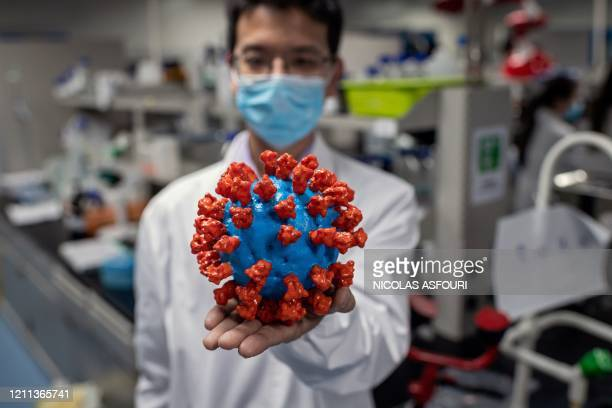 In this picture taken on April 29 an engineer shows a plastic model of the COVID-19 coronavirus at the Quality Control Laboratory at the Sinovac...