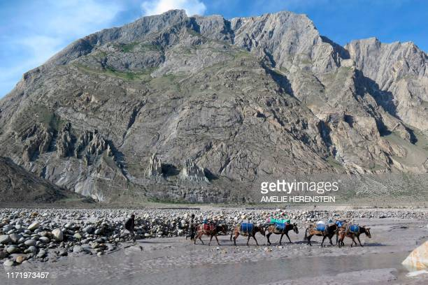 In this picture taken on August 20, 2019 porters and their mules make their way down from Baltoro glacier in the Karakoram range of Pakistan's...