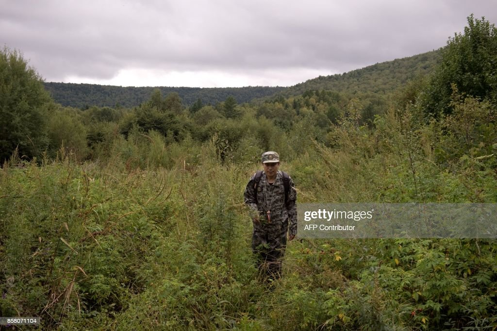 In this picture taken on August 24, 2017, Liang Fengen, a ranger at the Nuanquan River Forestry Centre, surveys an area in Suiyang town, Mudanjiang municipality. In the northern mountains bordering Russia, everyone knew the spry Chinese man as a skilled and ruthless hunter -- the kind who once killed a mother black bear as her cubs looked on. But instead of stalking the woods for prey, Liang Fengen now roams the hills without a rifle, working as a ranger to save the area's endangered Siberian tiger population and protect other wildlife. / AFP PHOTO / Nicolas ASFOURI / TO GO WITH China-conservation-animal, FEATURE by Yanan WANG