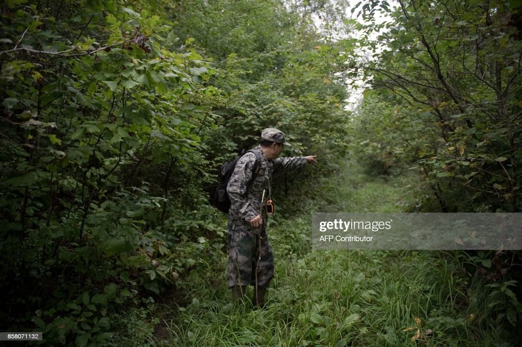 In this picture taken on August 24, 2017, Liang Fengen, a ranger at the Nuanquan River Forestry Centre, gestures as he surveys an area in Suiyang town, Mudanjiang municipality. In the northern mountains bordering Russia, everyone knew the spry Chinese man as a skilled and ruthless hunter -- the kind who once killed a mother black bear as her cubs looked on. But instead of stalking the woods for prey, Liang Fengen now roams the hills without a rifle, working as a ranger to save the area's endangered Siberian tiger population and protect other wildlife. / AFP PHOTO / Nicolas ASFOURI / TO GO WITH China-conservation-animal, FEATURE by Yanan WANG
