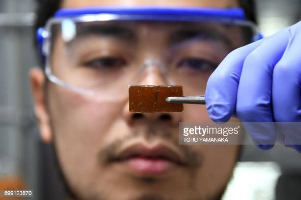 In this picture taken on December 25 Yu Yanagisawa, a chemistry researcher at the University of Tokyo, displays a piece of repaired broken resin...