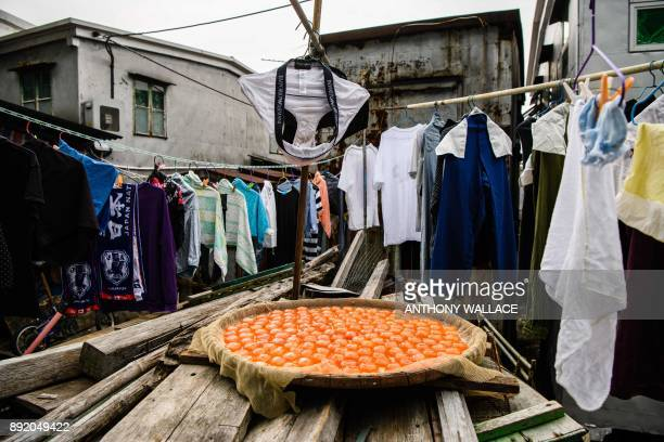 TOPSHOT In this picture taken on December 5 laundry is hung out as salted egg yolks are left to dry in the sun on the Lantau fishing village of Tai O...