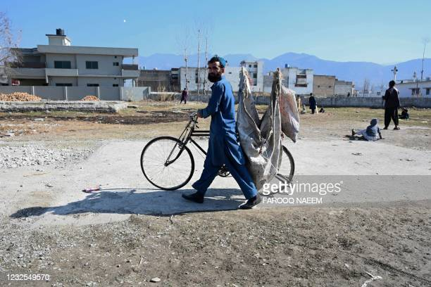 In this picture taken on February 11 a ragpicker pushes his bicycle along the demolished compound of slain former Al-Qaeda leader Osama bin Laden, in...