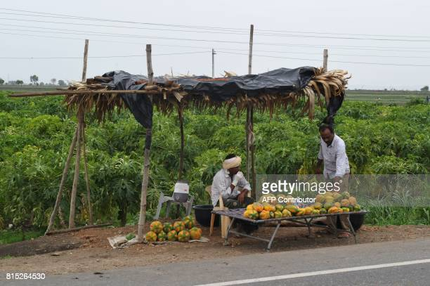 In this picture taken on July 15 2017 an Indian farmer sells papayas in a stall along a highway road in Guntur District in the southern Indian state...