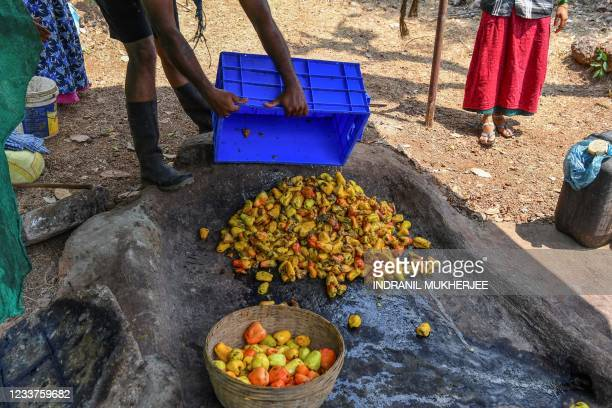 In this picture taken on March 13 a worker pours cashew apples for stomping at a farm belonging to the Madame Rosa distillery at Pilerne in North...