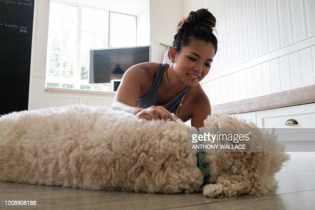 In this picture taken on March 26 Alison Yuen who is a Singapore national, pets her dog after taking a fitness class which was recorded by her...