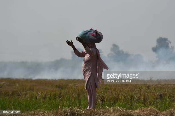 In this picture taken on October 16 a woman looks on near burning straw stubble at a field in Barana village in the northern Indian state of Haryana....