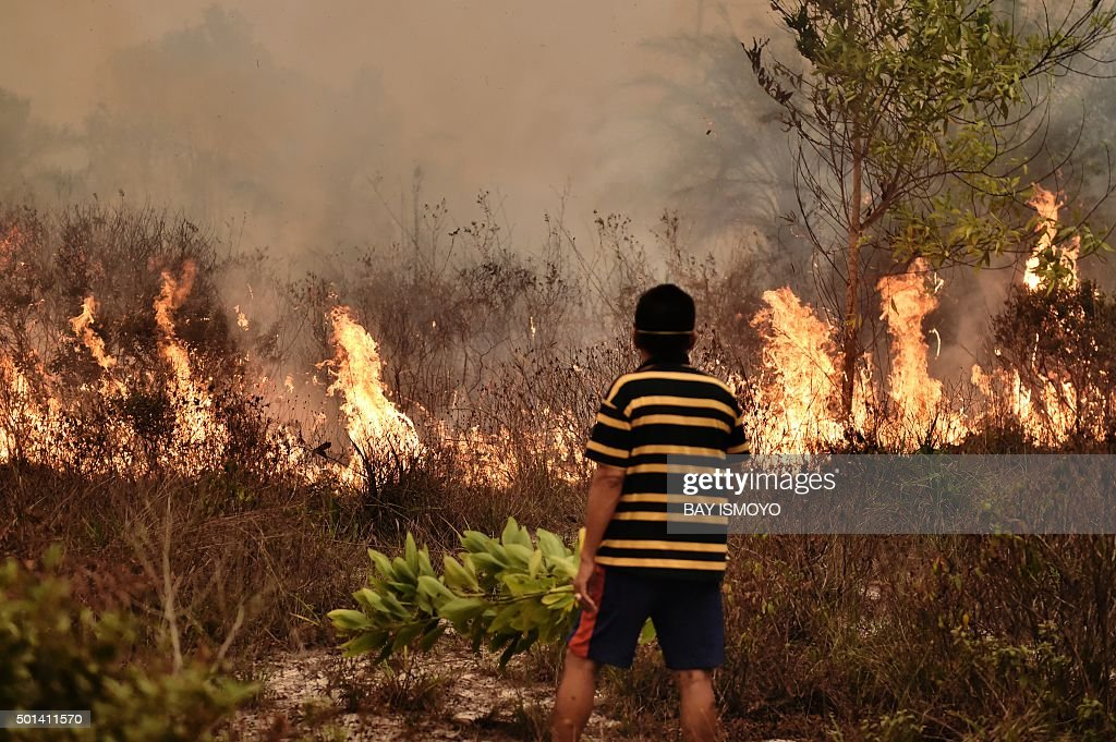 in this picture taken on october 26 2015 a villager looks at a