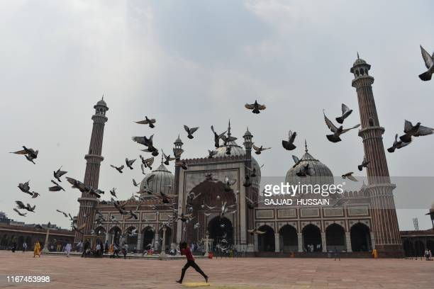 In this picture taken on September 11 a boy runs under a flock of pigeons at Jama Masjid in New Delhi. - Pigeon flying, locally known as Kabootar...