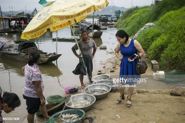 In this picture taken on September 7 a woman looks at fish for sale from Tanka fishermen in Datang in southern China's Guangdong province Along...