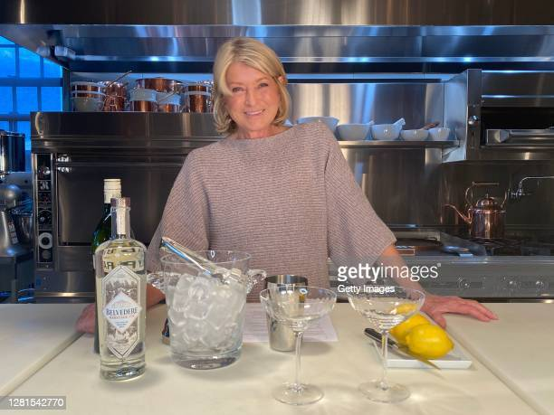 In this screengrab, Martha Stewart speaks during the Hudson River Park Ungala on October 21, 2020.