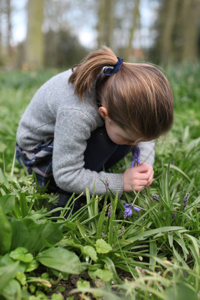 GBR: Princess Charlotte Smelling A Bluebell