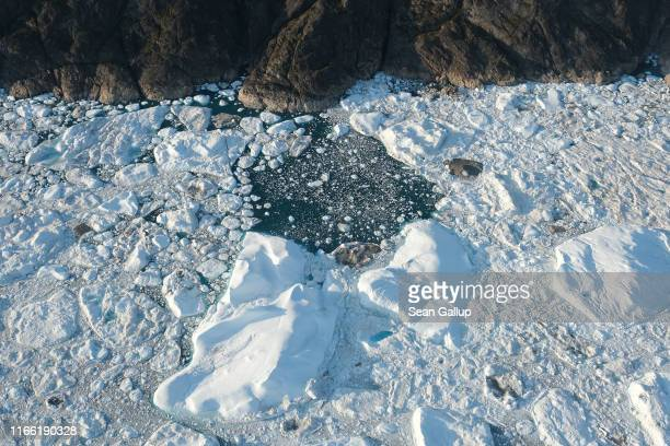 In this view from an airplane icebergs and ice float jammed into the Ilulissat Icefjord on August 04 2019 near Ilulissat Greenland The Sahara heat...