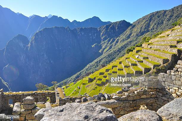 "inca agricultural terraces in machu picchu - ""markus daniel"" stock pictures, royalty-free photos & images"