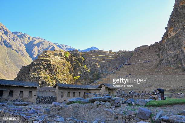 "inca ruins in ollantaytambo, peru - ""markus daniel"" stock pictures, royalty-free photos & images"