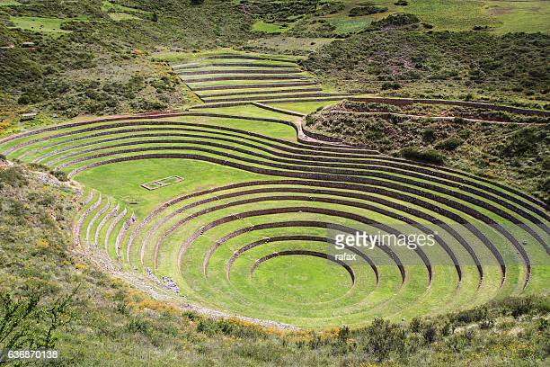inca ruins of moray, consisting of several terraced circular depressions - terraced field stock pictures, royalty-free photos & images