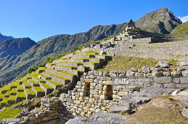 "inca storehouse and terraces in machu picchu - ""markus daniel"" stock pictures, royalty-free photos & images"