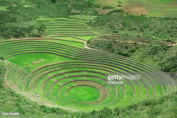 inca terraced fields in ruins in moray, perú - terraced field stock pictures, royalty-free photos & images