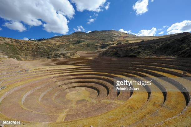 Incan terraces of Moray The Incan agricultural terraces at Moray near the old city of Cuzco at an altitude of 3500 metres in Peru's Andes on July 22...