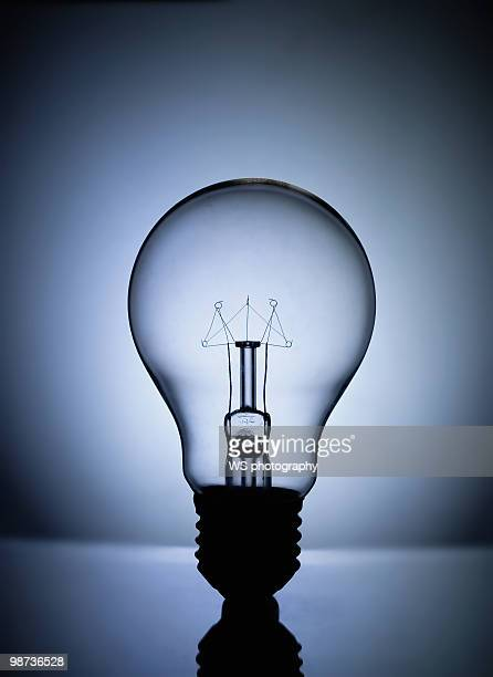 LED + incandescent light bulb