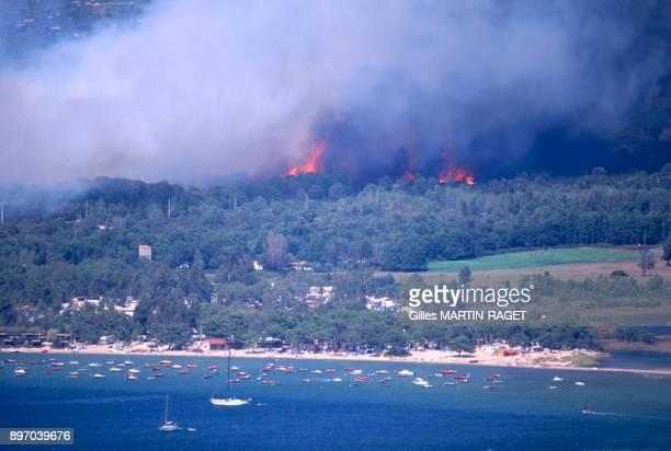 Incendie dans la region de PortoVecchio en CorseduSud France