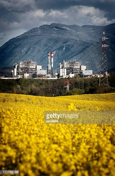 incinerator burning waste in a natural landscape - incinerator stock photos and pictures
