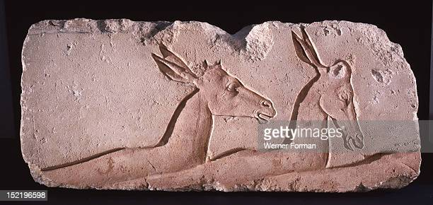Incised block from an Amarna temple The sunk relief depicts three antelopes possibly part of a hunting scene Egypt Ancient Egyptian 18th dynasty c...