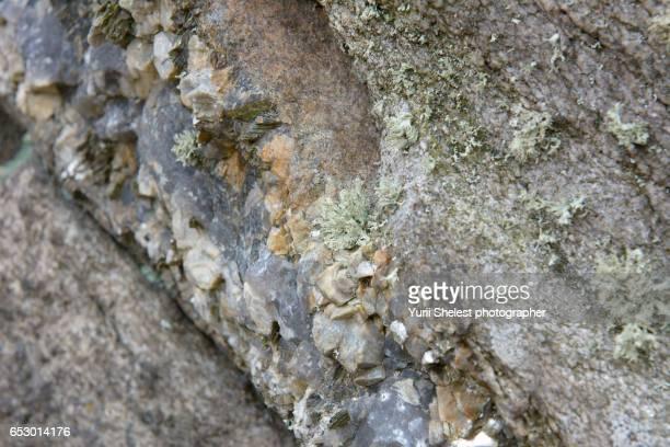 Inclusions of quartz in a granite rock