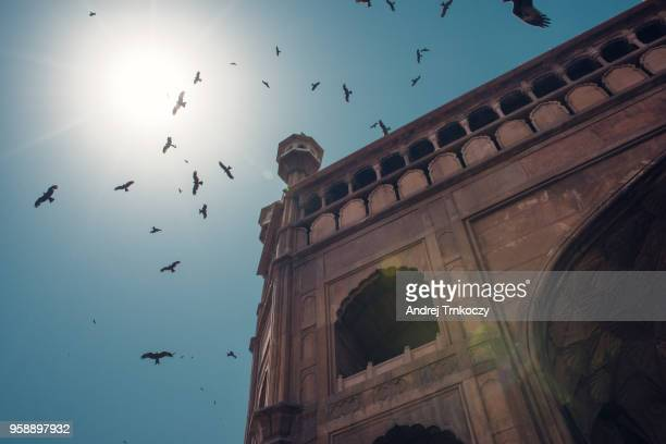 incredible india - monument stock pictures, royalty-free photos & images