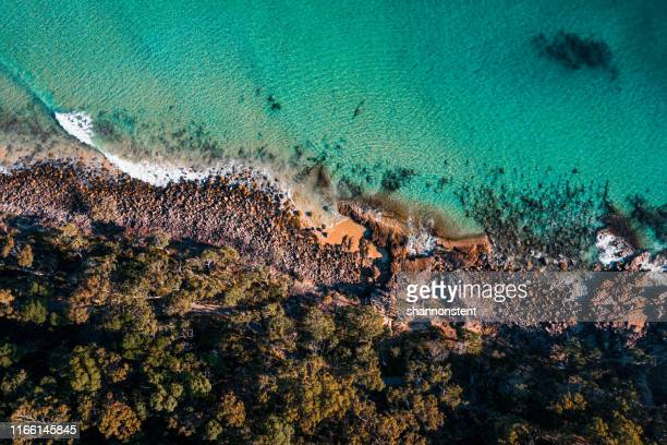 incredible noosa colour palette - queensland foto e immagini stock