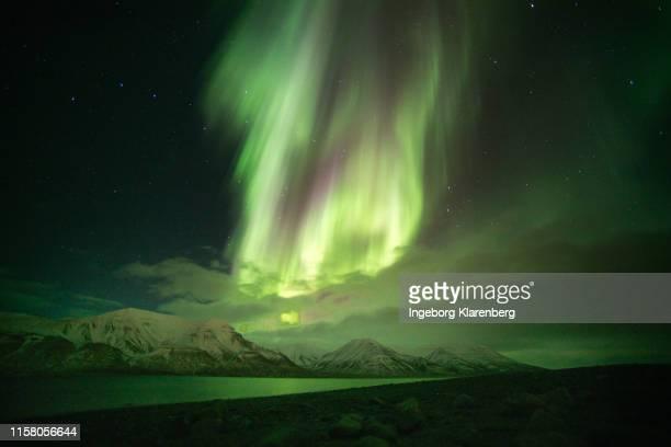 incredible northern lights above advent fjord - スヴァールバル諸島 ストックフォトと画像
