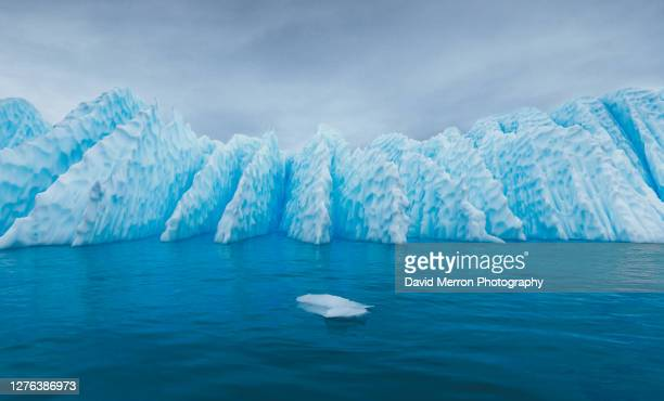 incrwdkble blue iceberg in antarctica - antarctica stock pictures, royalty-free photos & images
