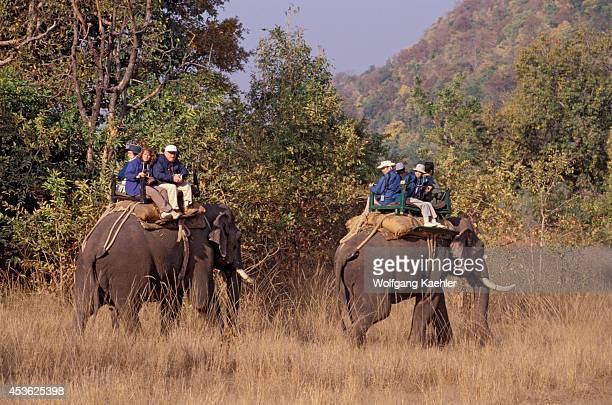 India Bandhavgarh National Park Tourists On Elephant