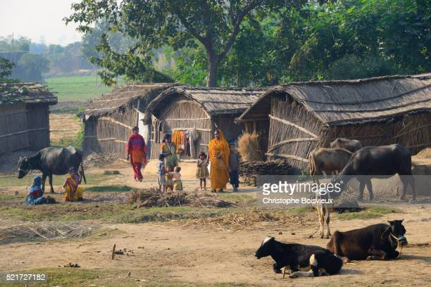 India, Bihar, Patna region, Traditional village