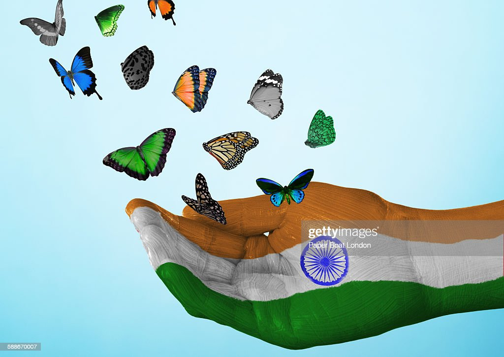 India Flag Painted On Hand With Butterflies Stock Photo