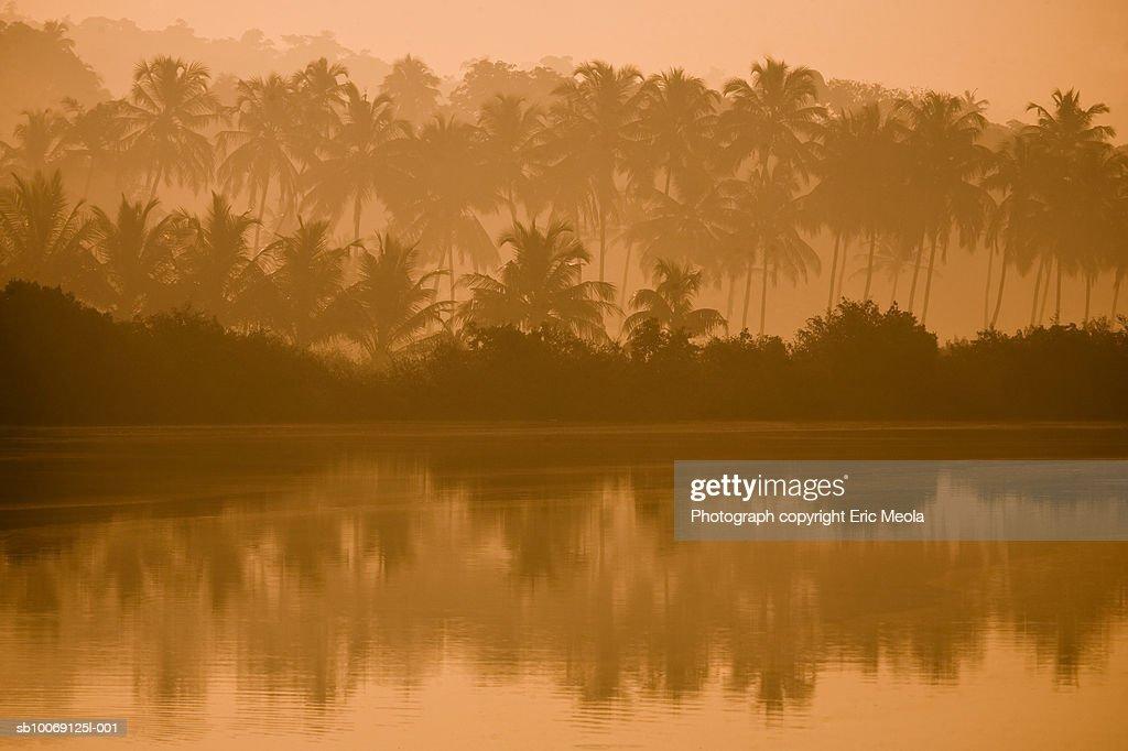 India, Goa, Bank of river Mandovi in morning : Stockfoto