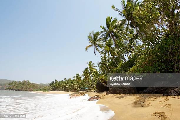 India, Goa, Kola Beach
