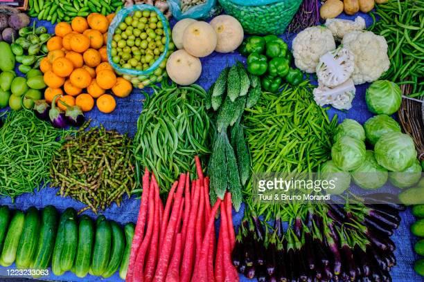 india, gujarat, ahmedabad,  fish market - organização das nações unidas - fotografias e filmes do acervo