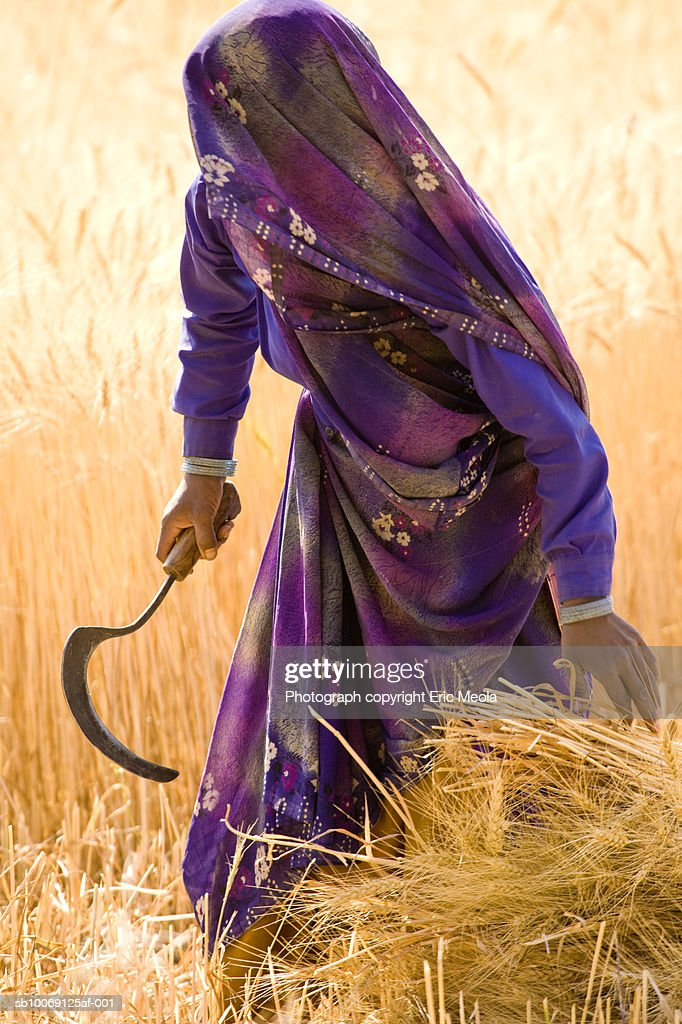 India, Gujarat, Woman with scythe in field : Stockfoto