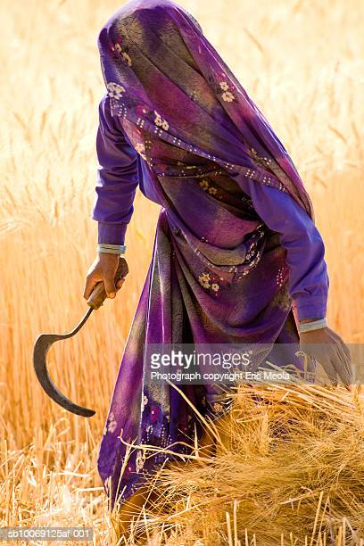 India, Gujarat, Woman with scythe in field