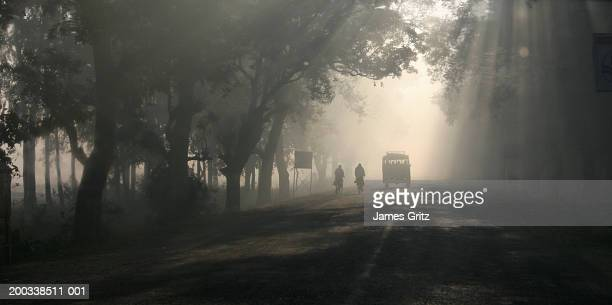 india, kapilavastu, cyclists and van on misty road through forest - terai stock pictures, royalty-free photos & images