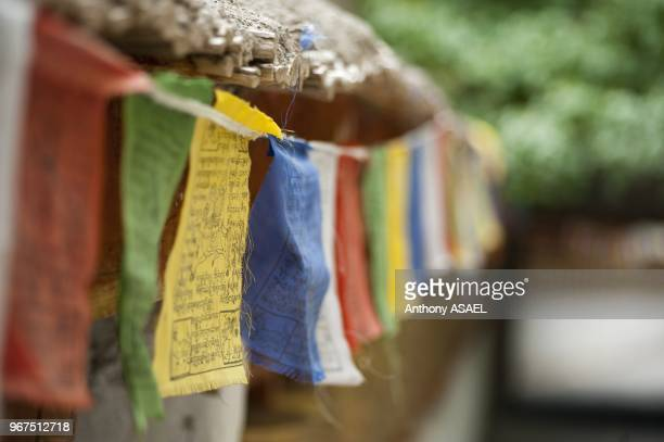 India Ladakh Alchi colorful buddhist prayer flags